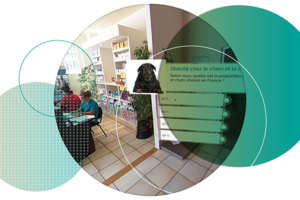 VariousClients_VirtualReality